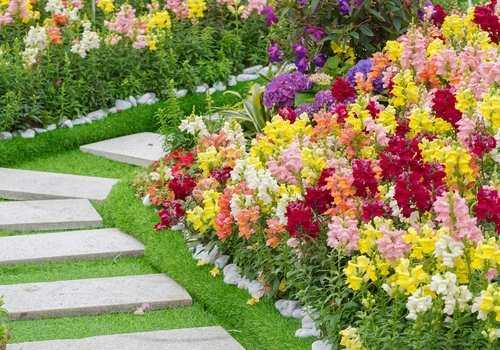 backyard gardens randburg sandton