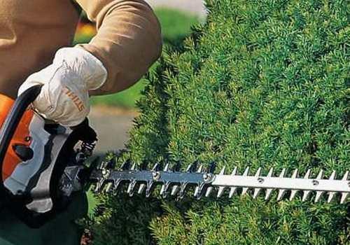 garden maintenance randburg sandton
