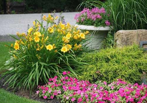 seasonal gardening randburg